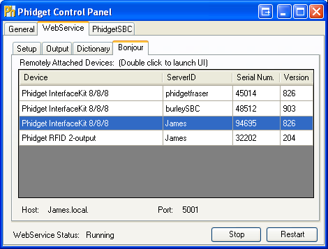 Windows Control Panel WebService Bonjour